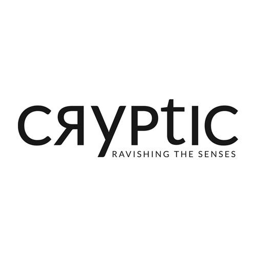 Talent Development Partner 2017: Cryptic