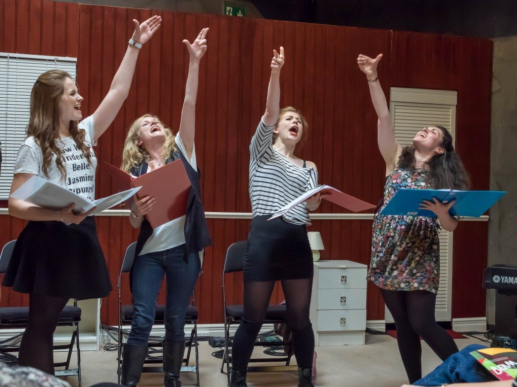 Talent Development Partner 2017: Mercury Musical Developments & Musical Theatre Network