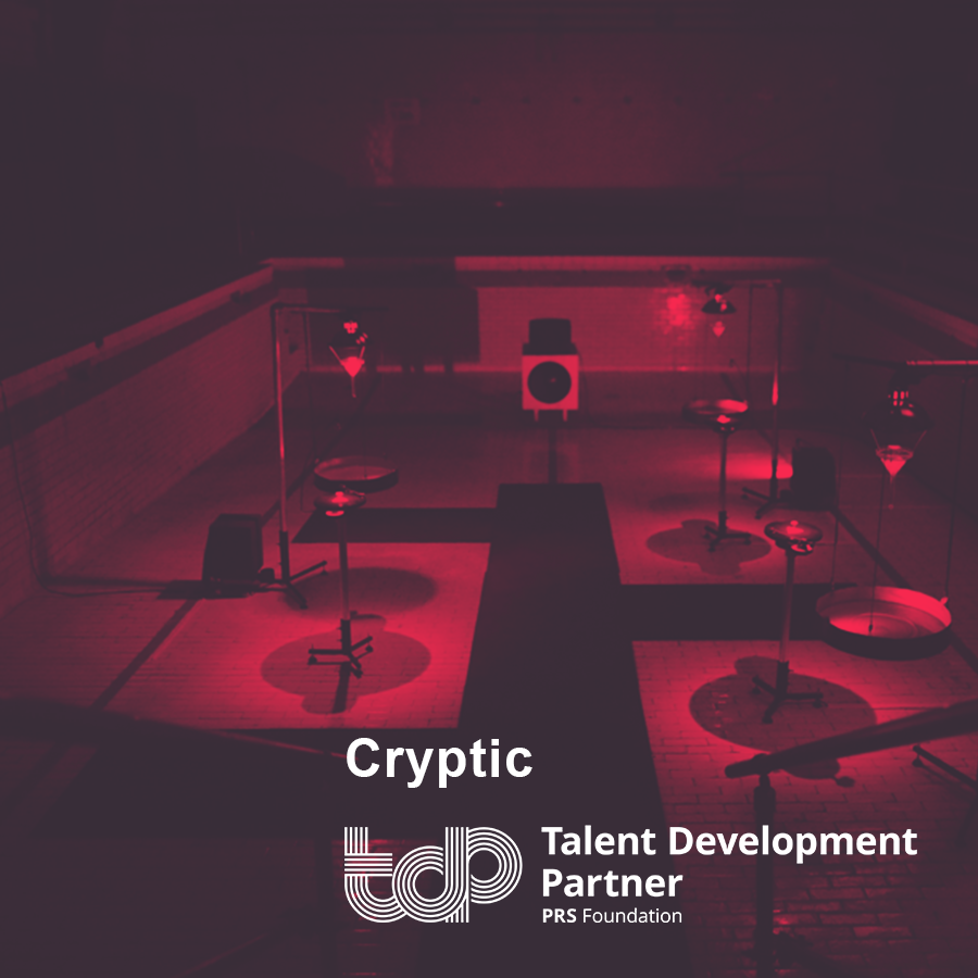 Talent Development Partner 2019: Cryptic