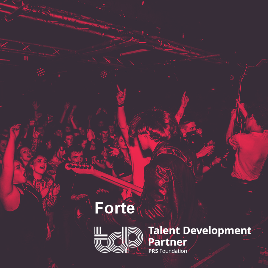 Talent Development Partners 2019: Forté Project