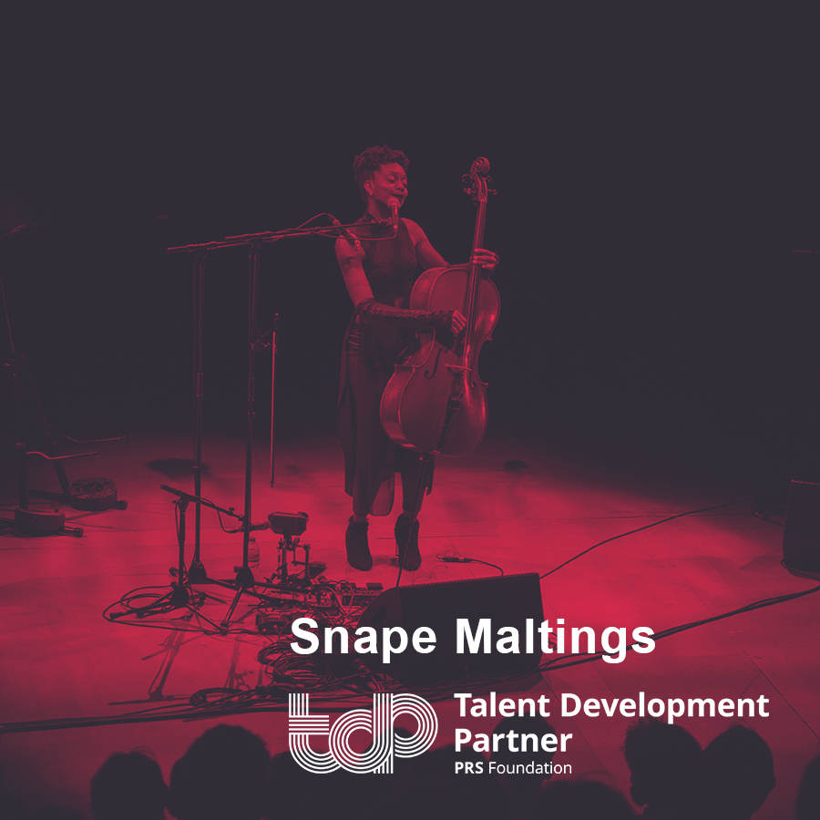 Talent Development Partners 2019: Snape Maltings